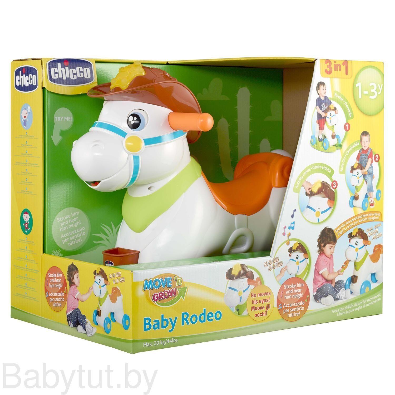 Chicco Rodeo Dondolo.Kupit Loshadka Katalka Chicco Chiko Baby Rodeo 340628203